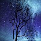 Tree Impressions by Susie Peek