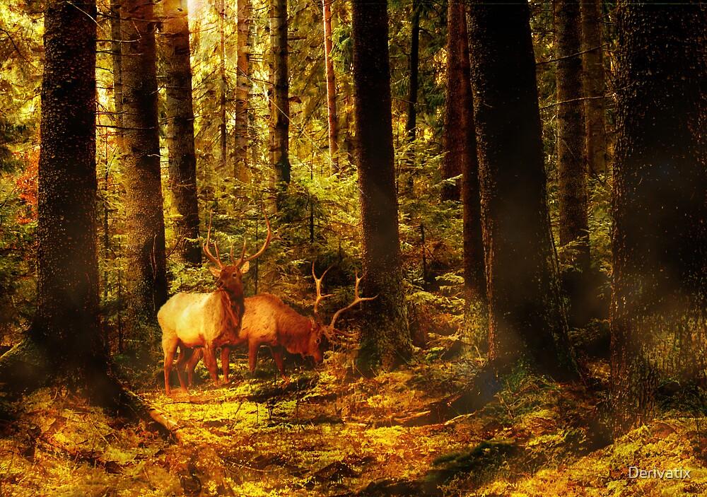 Autumn Forest by Derivatix
