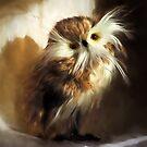 Feathery Owl Impressions by Susie Peek