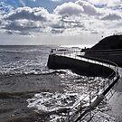 Seawall 2 - Lyme Regis by Susie Peek