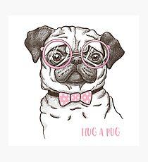 funny fashionable pug Photographic Print