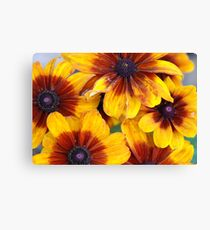 Showy Group Canvas Print