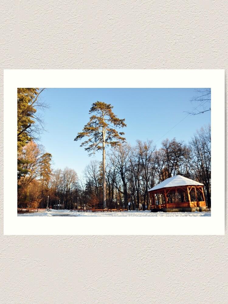 Alternate view of Winter tale Art Print
