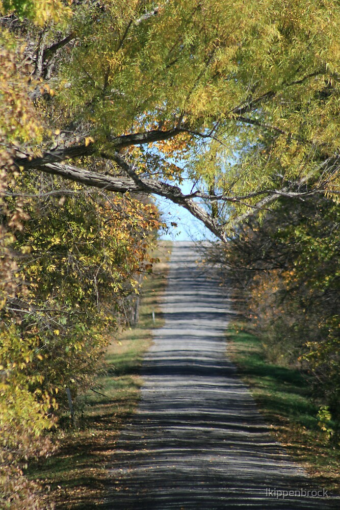 Country Road by lkippenbrock