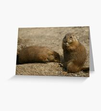 Cute Playful Groundhog Greeting Card