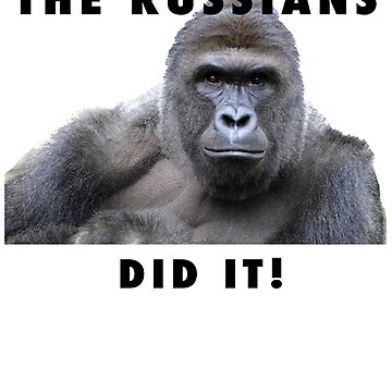 THE RUSSIANS DID IT - HARAMBE by pgnas