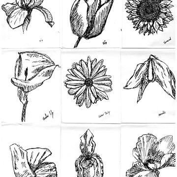 Flower Studies by JuliaDream