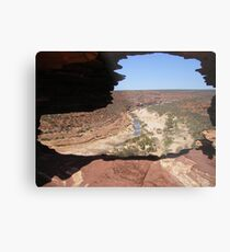 Looking Through Natures Window  Metal Print