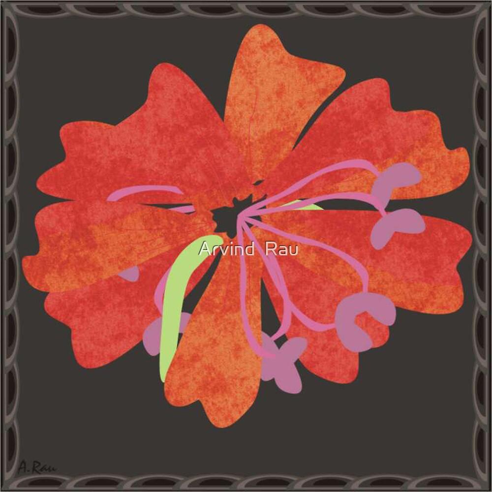 FLOWERS by Arvind  Rau