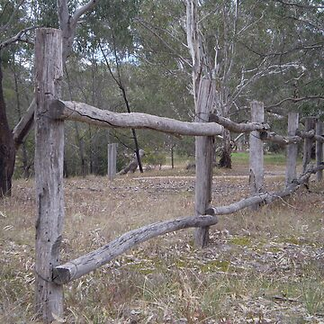 Fence by Hippo
