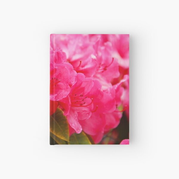 Pink Rhododendrons Hardcover Journal