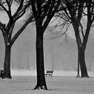 Quiet of Winter by Dan Bronish