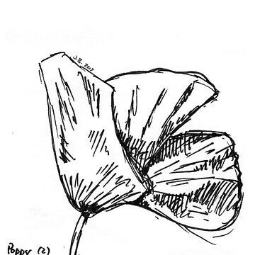 Poppy Sketch #2 by JuliaDream