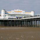 The Pier by Steve plowman