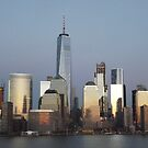 Lower Manhattan Skyline, Twilight View, New York City by lenspiro