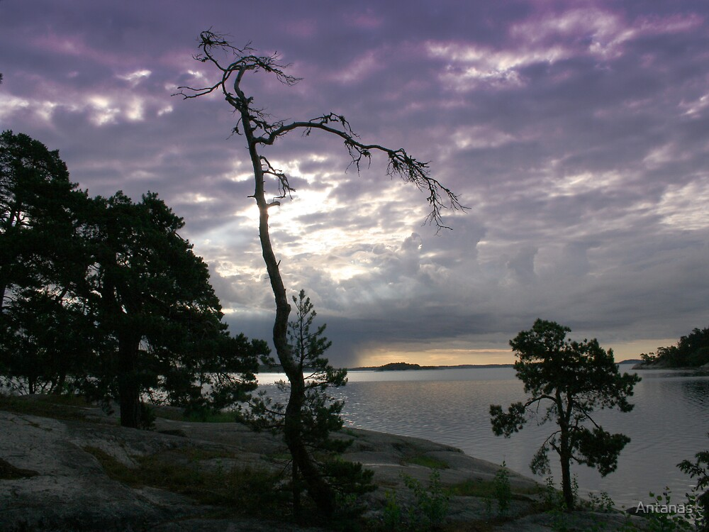 Rock island in the Baltic sea (SWEDEN) by Antanas