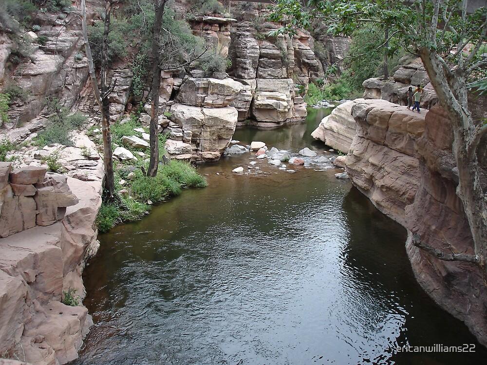 Arizona Creek by ericanwilliams22