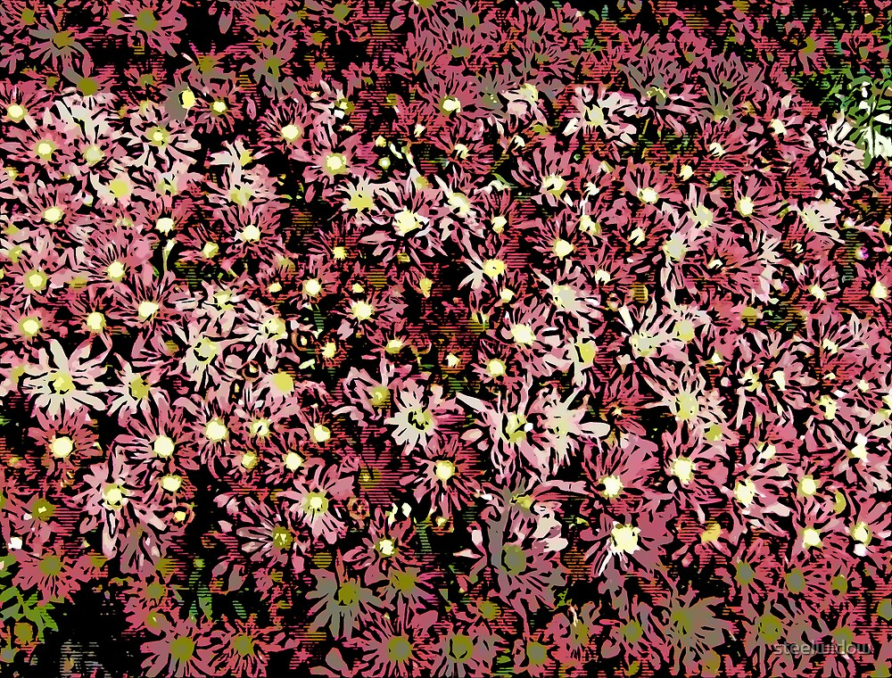 Comic Abstract Pink Flowers by steelwidow