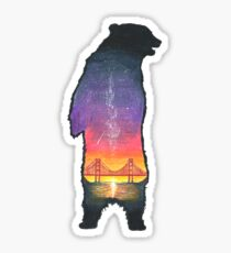 Colored Pencil Bear Drawing Sticker