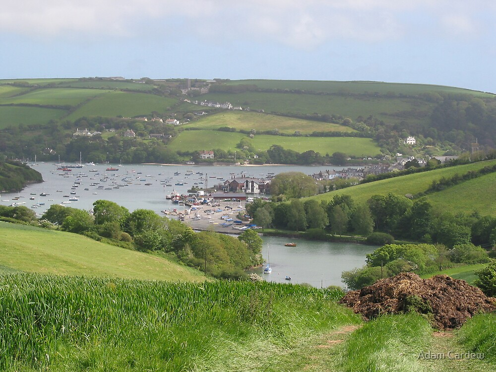 Salcombe Harbour from afar by Adam Cardew