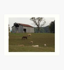 Tennesse Farm Art Print