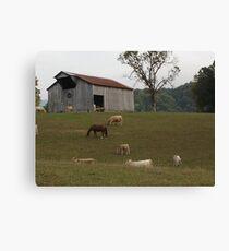 Tennesse Farm Canvas Print