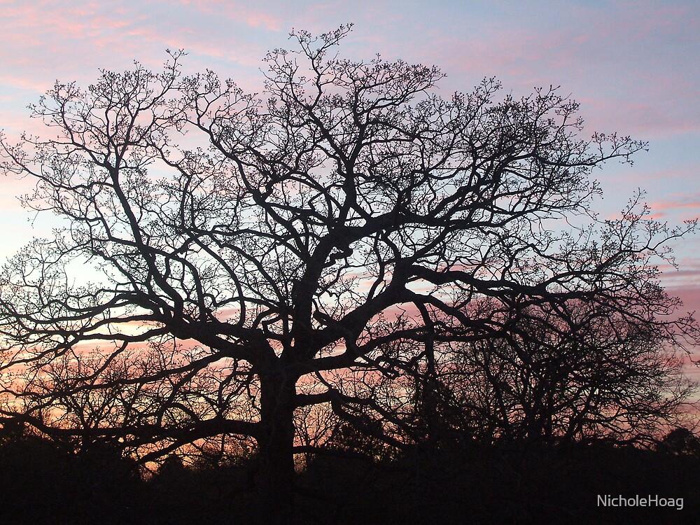 Gotta Love Sunsets by NicholeHoag