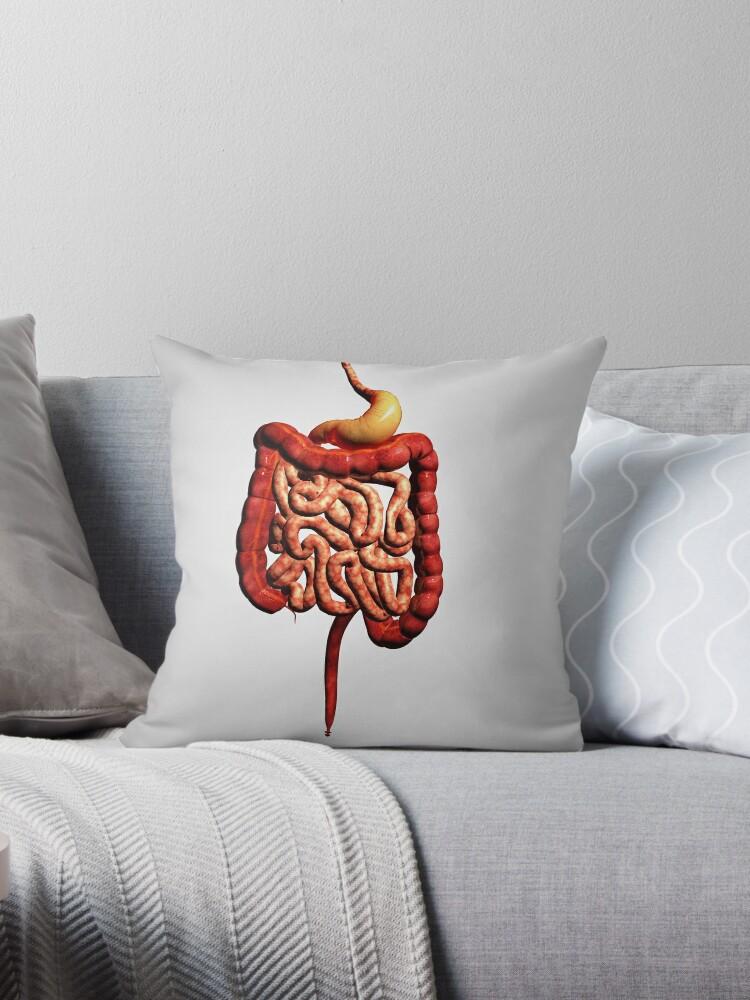 Cojines «Vista frontal del sistema digestivo humano.» de ...