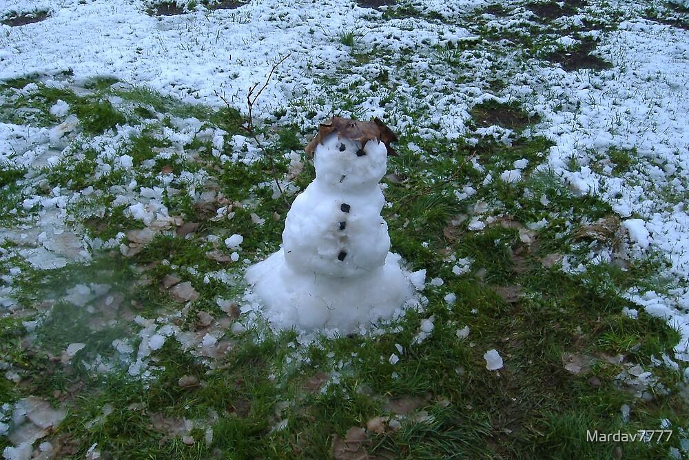Little Snow Guy by Mardav7777