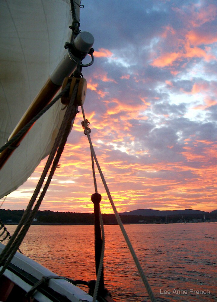 Sunset Sail by Lee Anne French