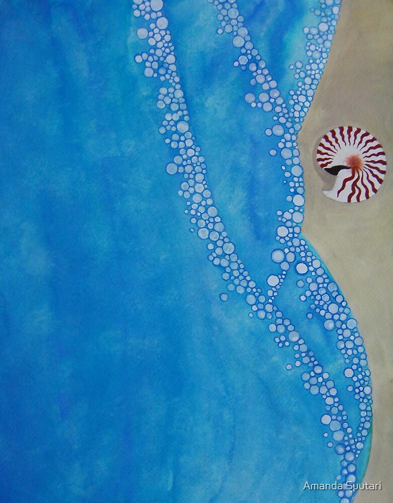 Nautilus by Amanda Suutari