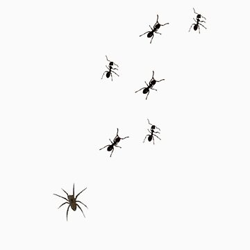 Spider/Ants by Hippo