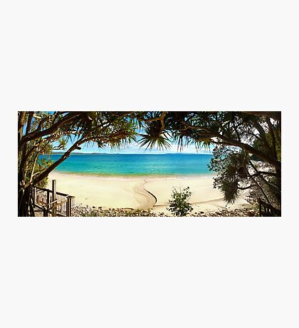 The Beauty of Little Cove Photographic Print