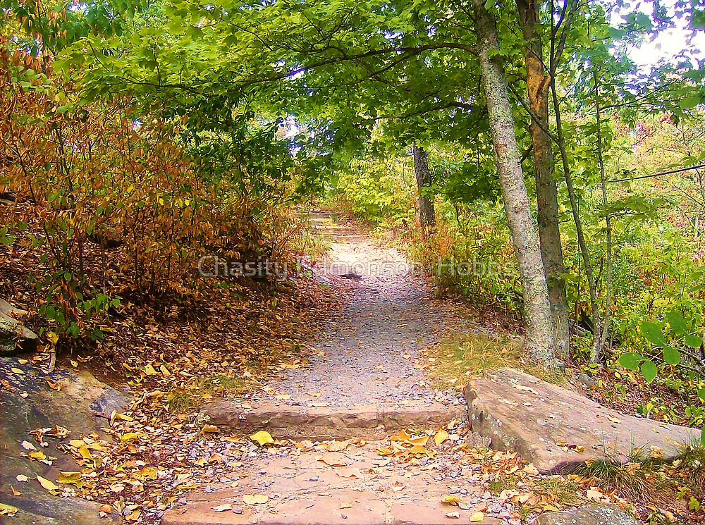 Same Path Newly Done Looks better by Chasity Edmonson-Hobbs
