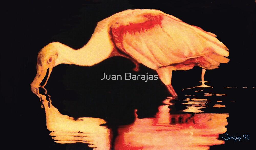 En busca de una nueva imagen by Juan Barajas
