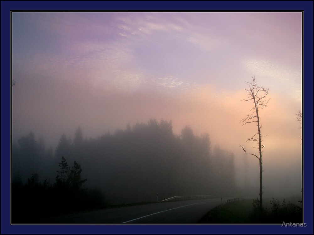 The road in the morning mist by Antanas