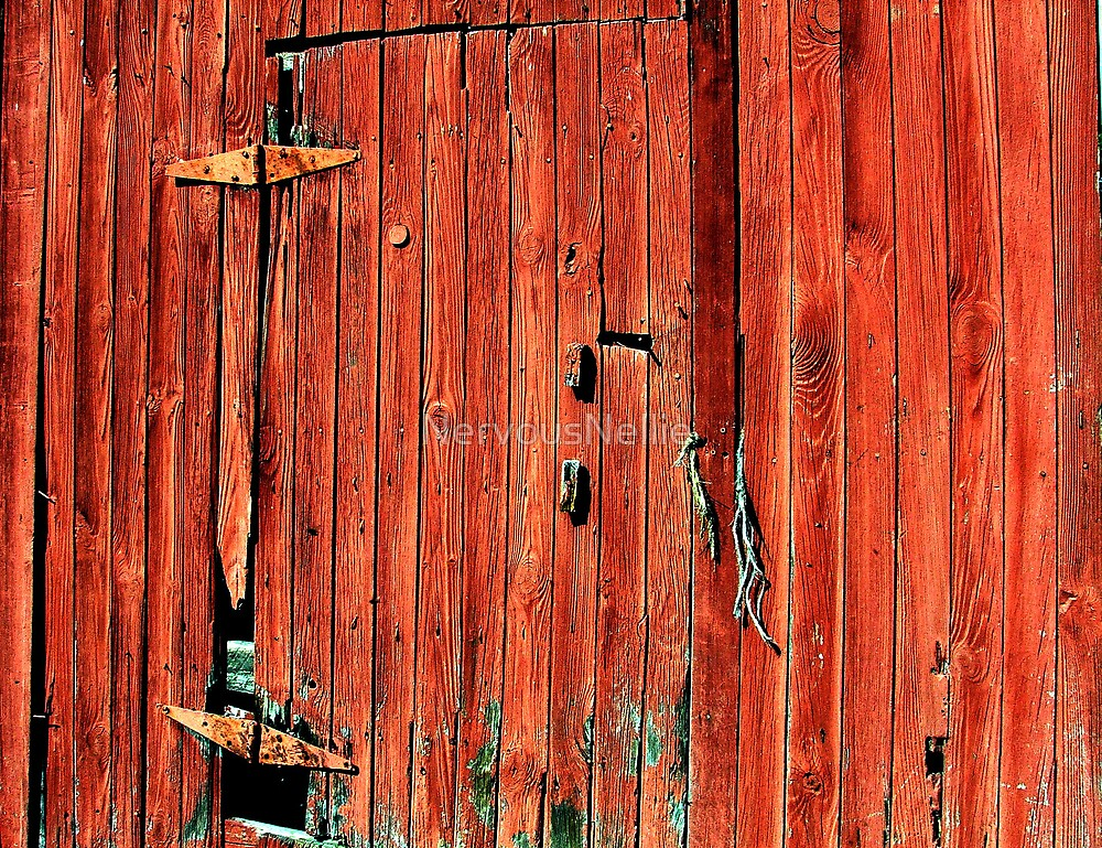 Barn Door by NervousNellie