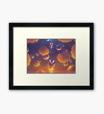 Balloon Flight  Framed Print