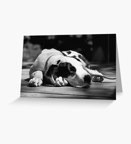 Tired Puppy Greeting Card