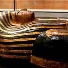 Sarcophagus by annalisa bianchetti