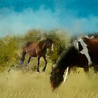Equine  Paradise by Kelly  McAleer