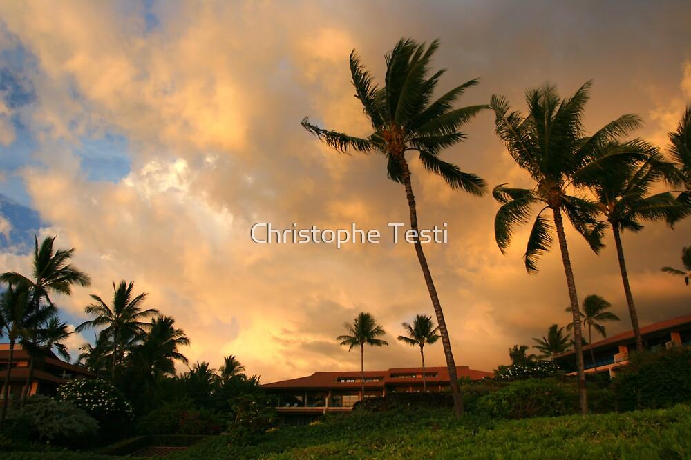 Maui Sunset by Christophe Testi