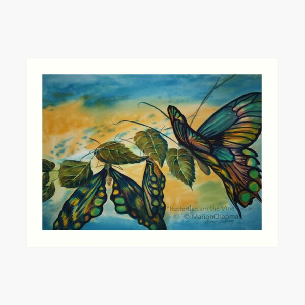 Watercolour: Butterflies on the Vine Art Print