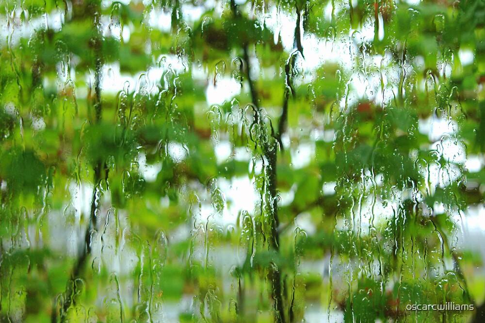 Trees by oscarcwilliams