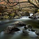 Galleny Force Stonethwaite English Lake District by Martin Lawrence
