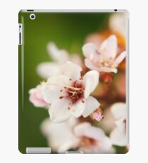 Macro flowers, floral, nature photography iPad Case/Skin
