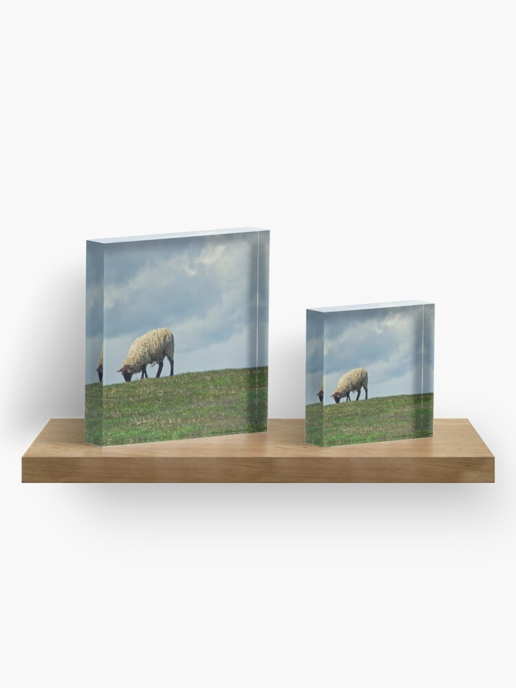 Alternate view of Sheep on the Hill Acrylic Block
