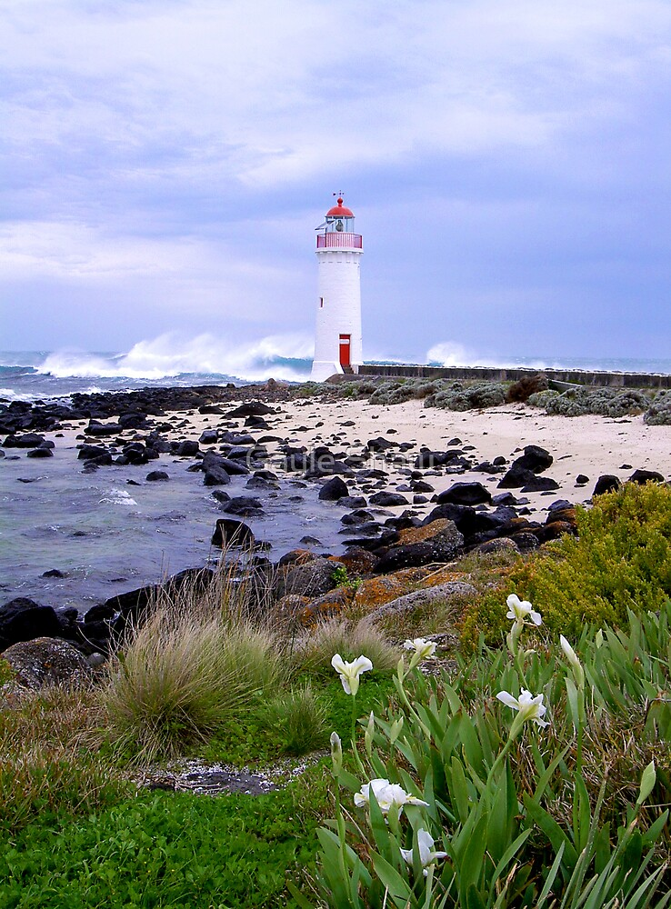 Port Fairy Lighthouse, Victoria, Australia by Gayle Shaw