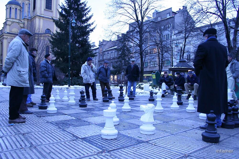 Winter Chess Men by mtamer