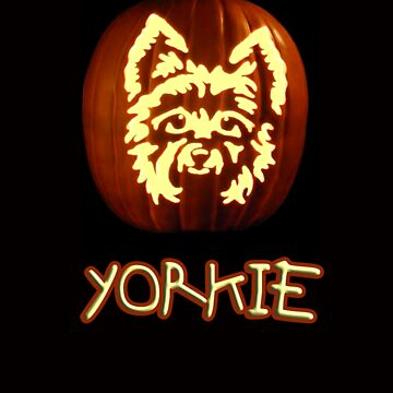 Yorkie Pumpkin by quin10